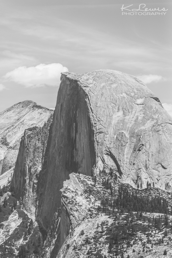 pensacola wedding photographer captures yosemite national park wedding photos