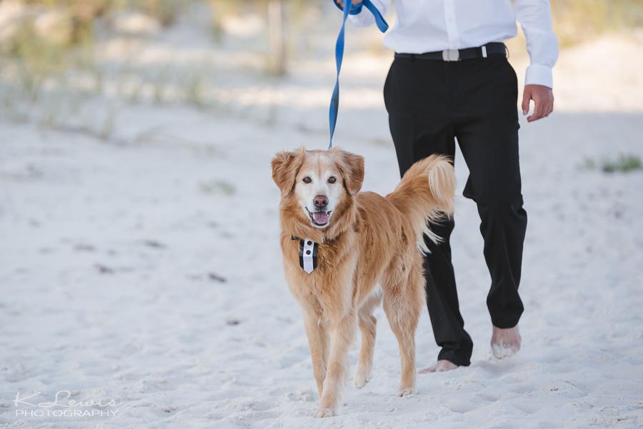 beach wedding photos perdido key fl