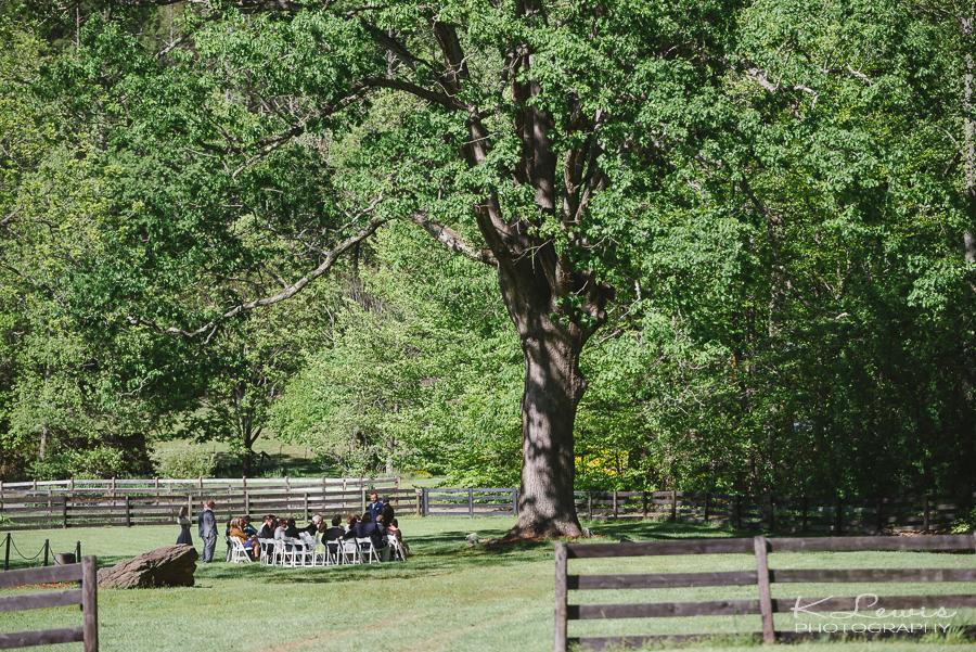fields of blackberry cove asheville wedding photographers