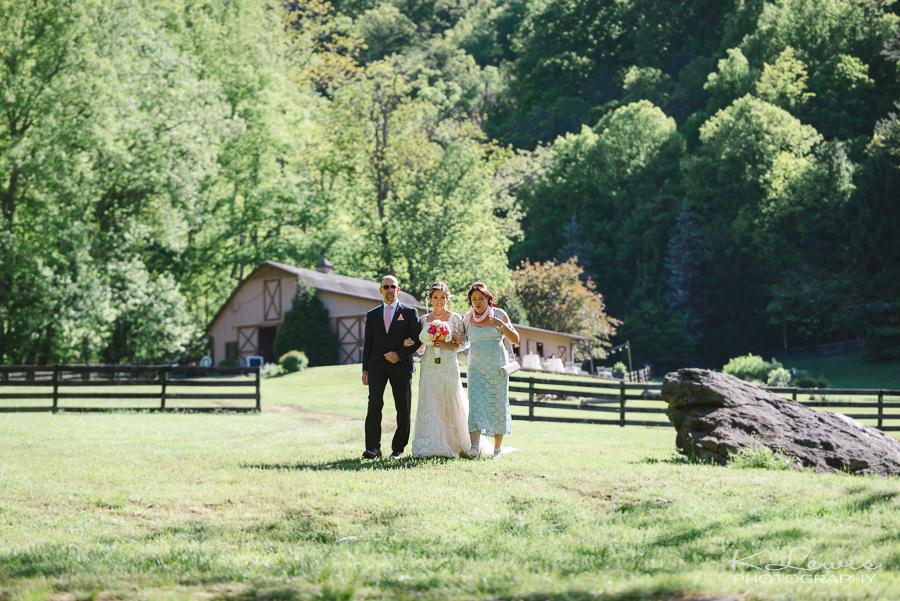 fields of blackberry cove wedding photos asheville nc