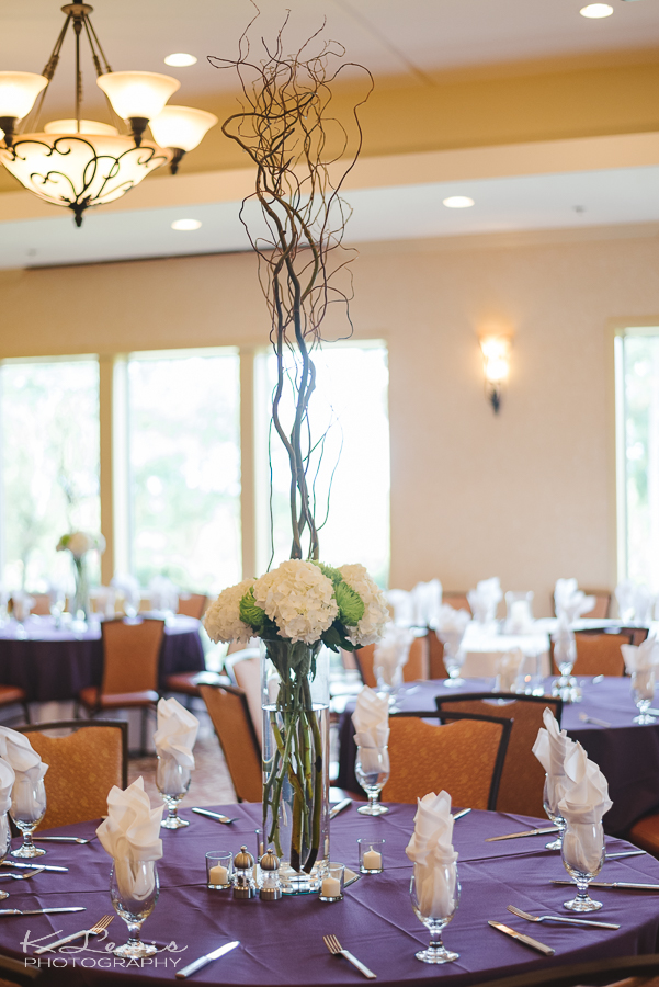 scenic hills country club wedding photographer